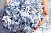 shredding.hands